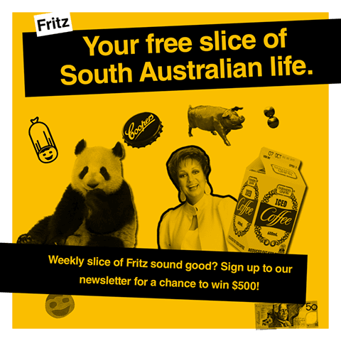 South Australia Your Free Fritz Magazine Has Arrived At Foodland