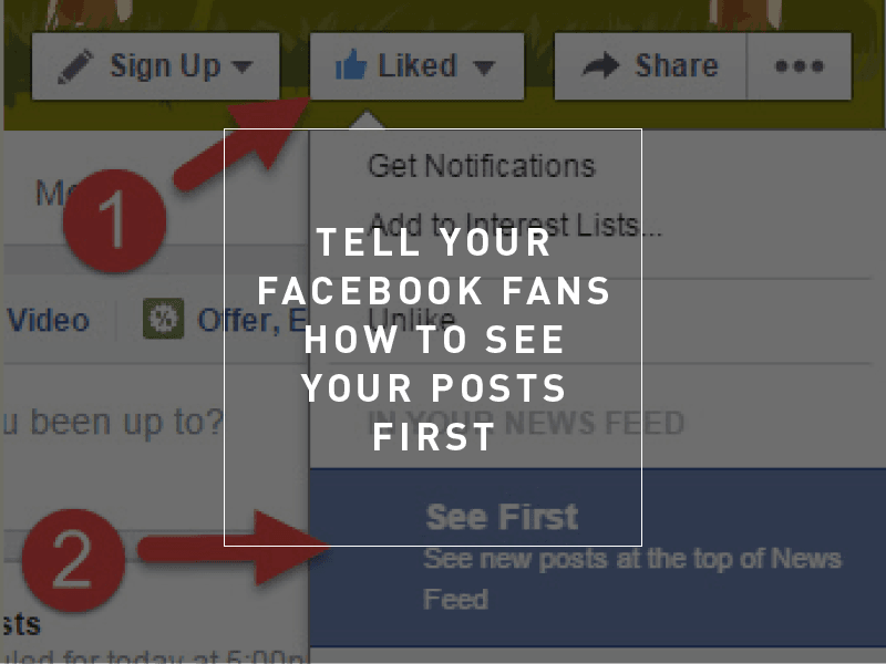 Image result for how to see Facebook Fans